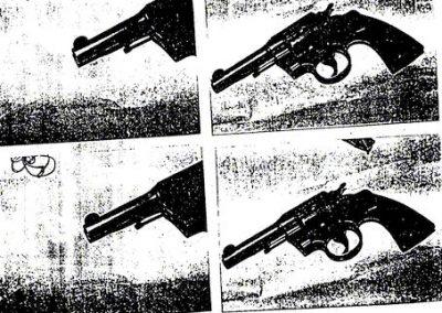 Informe | Régimen provincial de armas de fuego
