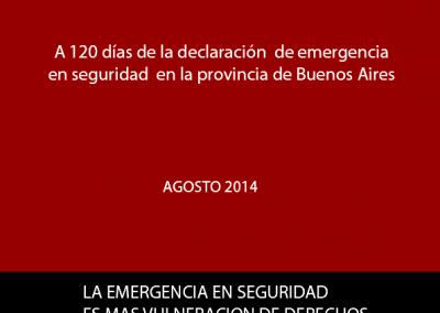 Informe | Emergencia en seguridad 2014